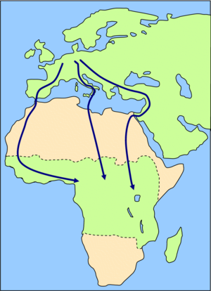 alt: Příklady tažných tras ptáků. Zdroj Wikimedia Commons, autor Von Lanzi, volné dílo, CC BY-SA 3.0
