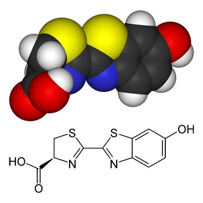 alt: Model molekuly a chemický vzorec luciferinu světlušek. Různé organismy používají různé luciferiny, jejichž chemická struktura se může výrazně lišit. Zdroj Wikimedia Commons, autoři Benjah-bmm27 (horní obrázek), Yikrazuul (dolní obrázek), volné dílo / public domain.