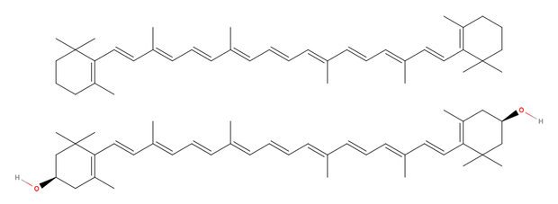 alt: V řadě hub nacházíme žluté, oranžové až červené karotenoidy. Zástupci této skupiny přírodních látek jsou například beta-karoten (*nahoře*) a zeaxanthin (*dole*).